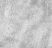 Luxurious wool Stock Photography