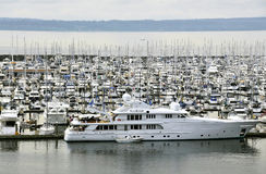 Luxurious yachts in marina. Scenic view of luxurious yachts in crowded marina stock image