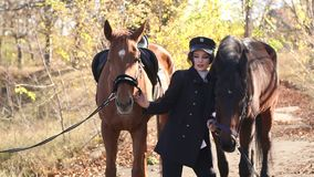Luxurious young girl walks with two horses in the forest in warm autumn weather. stock footage