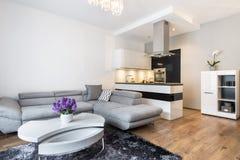 Luxurry vardagsrum med kökområde Fotografering för Bildbyråer