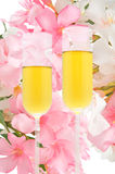 Luxury. Champagne in a romantic and elegant wedding Royalty Free Stock Photography