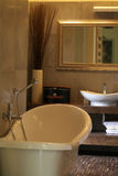 Luxury Apartment Bathroom. Section of a bathroom in a luxury apartment royalty free stock photos