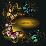 Luxury background with ornament and butterflies Stock Image