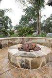Luxury backyard Stock Photography