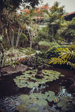 Luxury Bali mansion Stock Photos