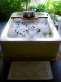 Luxury bath with foam. And roses in bungalow royalty free stock image