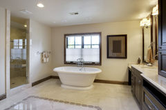 Luxury Bathroom. Angled view of bathroom with tub and cabinetry Stock Photo