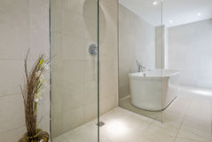 Luxury bathroom. Stunning luxury bathroom with shower corner and ceramic bath tub Stock Images