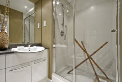 Luxury bathroom. Modern luxury bathroom with decorative elements in brown stock image