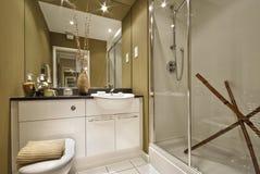Luxury bathroom. Modern luxury bathroom with decorative elements in brown stock photo