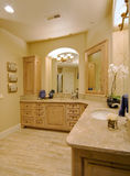 Luxury Bathroom. Ornate bathroom in luxury home stock photos
