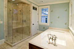 Luxury bathroom. With glass shower and whirlpool tub royalty free stock photos