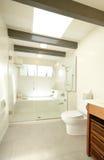 Luxury Bathroom. A whirlpool tub in a luxury bathroom Royalty Free Stock Image