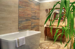 Luxury bathroom in a brand new home Royalty Free Stock Images