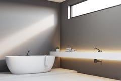 Luxury bathroom with gray walls, corner Royalty Free Stock Photography