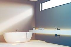 Luxury bathroom with gray walls, corner, toned Stock Photography