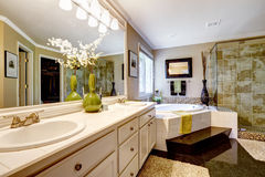 Luxury bathroom interior. With corner bath tub and glass door shower Stock Photography