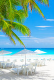 Luxury beach cafe. On beautiful clean seashore, blue cloudy sky, peaceful sea, fresh green palm tree leaves, exotic nature, tropical resort Royalty Free Stock Photos