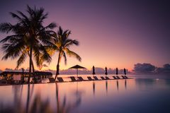 Luxury beach pool scene. Palm trees and infinity pool on Maldives beach Royalty Free Stock Images