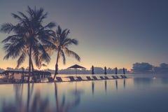 Luxury beach pool scene. Palm trees and infinity pool on Maldives beach Royalty Free Stock Image
