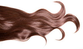 Luxury beautiful hair. A lock of curly voluminous healthy shiny. Hair on a white background Royalty Free Stock Images