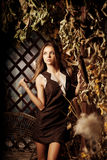 Luxury beauty young woman in a mystical forest stock images