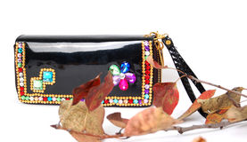 Luxury Black  Purse, Royalty Free Stock Photography