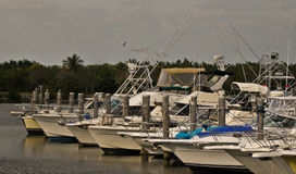 Luxury Boats At South Florida Marina. Luxury boats at Cutler Bay Marina in south florida Stock Images