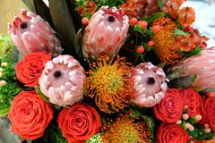 Luxury bouquet of fresh flowers protea and roses. Boho style Close up stock photo