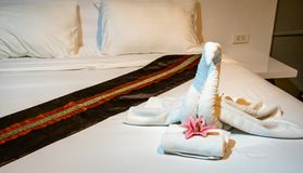 Free Luxury Boutique Hotel Swan Towel Art. Very Romantic And A Nice Surprise Welcome To The Vaction Royalty Free Stock Photo - 156105365