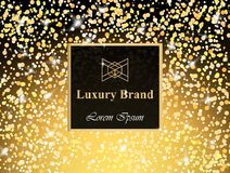 Luxury Brand card with glitter Vector. Abstract modern designs backgrounds sparkling lights. Luxury Brand card with glitter Vector. Abstract modern designs Royalty Free Stock Photos