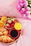 Luxury breakfast Stock Images