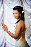 Luxury bride Stock Photography