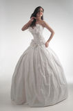 Luxury bride in form-fitting dress Royalty Free Stock Images