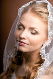 Luxury bride with wedding hairstyle Stock Images