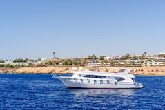 Luxury cabin cruiser cruising offshore Royalty Free Stock Image