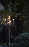 Luxury candle light Stock Images