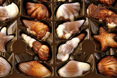 Luxury chocolate praline in the box. Royalty Free Stock Images