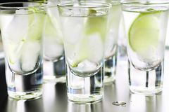 Luxury cocktail with tequila and lime Royalty Free Stock Image