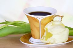 Luxury Coffee with Tulip. Luxury Coffee Golden Cup with White Tulip Stock Image