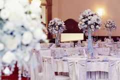 Luxury decorated tables at rich wedding reception. stylish arran Royalty Free Stock Photos