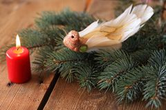 Luxury decoration Christmas birdie Royalty Free Stock Image