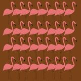 Luxury design Flamingos colorful pink on brown Vint. Stock Images