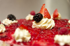 Luxury dessert with fresh fruits close up Stock Photography