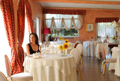 Luxury dinner Stock Images