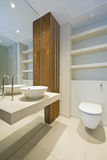 Luxury en-suite bathroom. With a round ceramic wash basin and toilet Stock Photography