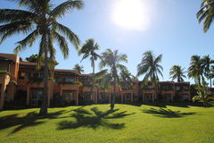 A luxury fijian resort with coconut trees Royalty Free Stock Images