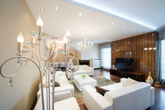 Luxury floor lamp in modern spacious living room with fireplace Stock Photos