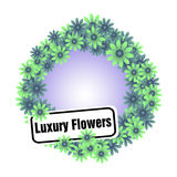 Luxury flowers Royalty Free Stock Photography