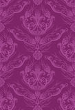 Luxury fuchsia floral wallpaper Royalty Free Stock Image